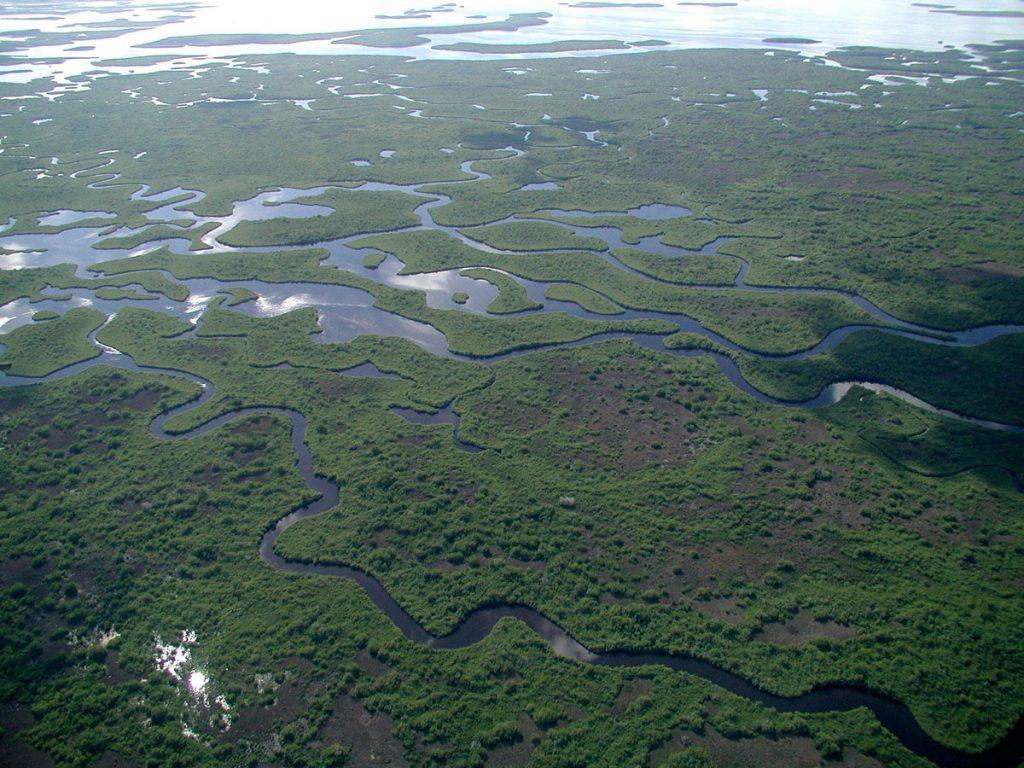 Parque-Nacional-Everglades