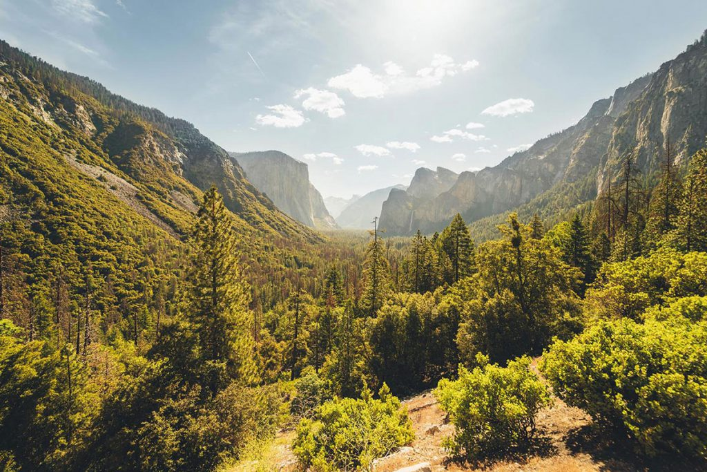 Parque-Yosemite